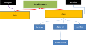 Status and Role Performance
